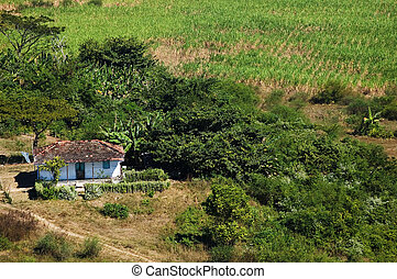 House in Valle de los Ingenios, Cuba - Small house and...