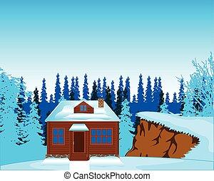House in wood in winter