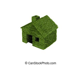 House made of grass
