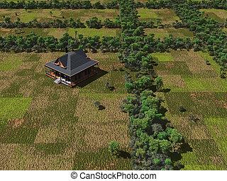 House on farmland