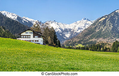 House on flower meadow and snow covered mountains in background