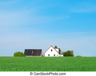 House on green agriculture field