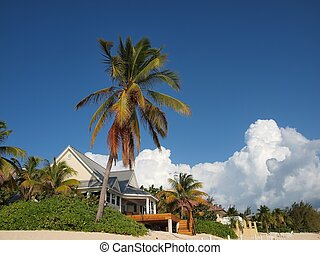 a beautiful beachfront house in the Cayman Islands
