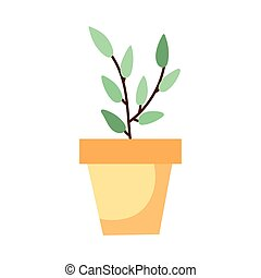 house plant hand draw style