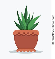 House Plant Tropical Ananas in Clay Pot for Decor