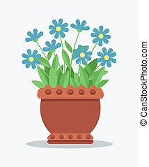 House Plant with Tender Blue Blossom in Clay Pot