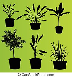 house plants drawing. house plants in flower pots set isolated vector drawing