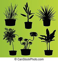 House Plants In Flower Pots Vector Cactus Flowerpot Decoration Icons