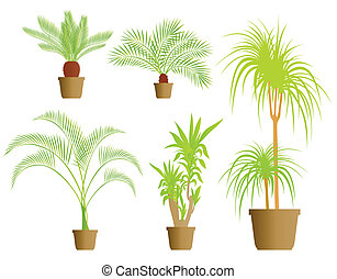 House plants vector background set