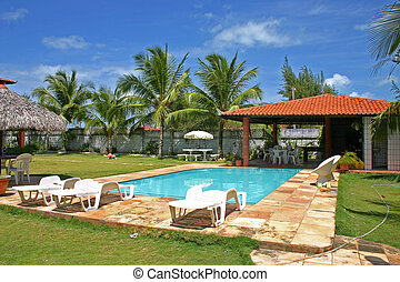 house pool with palmtrees and grass - house pool with ...