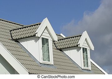 House roof - american style house