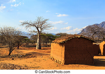 House surrounded by baobab trees in Africa, Tanzania