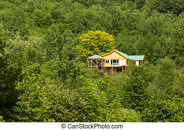 House under construction in the forest under the mountain