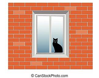 house wall, window, cat