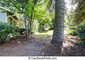 House with front yard landscape