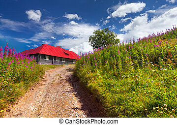 house with red roof in a field of flowers
