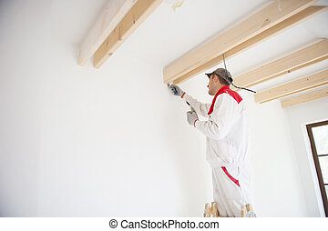 House worker - Construction worker is painting the wall in...