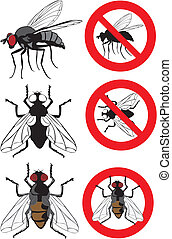 housefly - warning signs