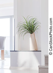 Houseplant in contemporary interior