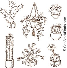 houseplants, セット, 様々