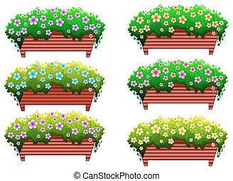 houseplants, flores