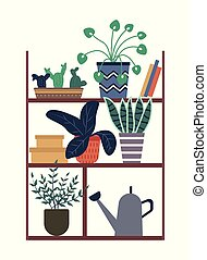 Houseplants Standing on Shelf with Books and Box