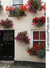 houses in the Padstow in Cornwall