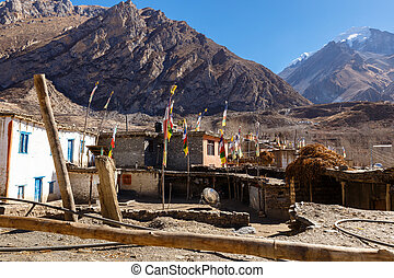 houses in the village of Jhong, Lower Mustang