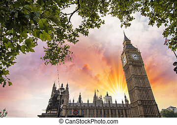 Houses of Parliament, London. Westminster Palace framed by tree branches.