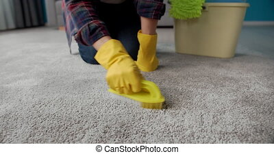 Housewife in rubber gloves cleaning carpet with brush - ...