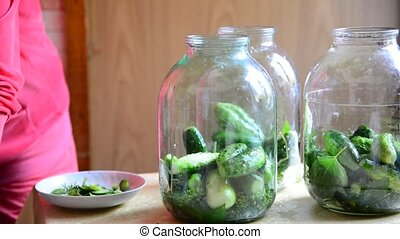 Housewife preparing homemade canned cucumbers for winter -...