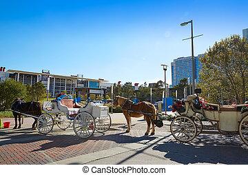 houston, upptäckt, grönt parkera, häst, vagnar