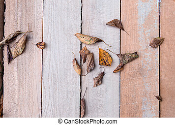 hout, blad, achtergrond