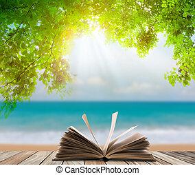 hout, blad, vloer, open, op, boek, groene, zee gras, strand