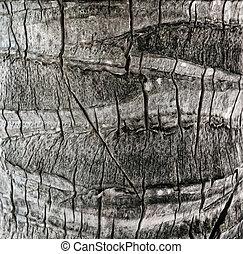 hout, oud