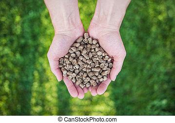 hout, pellets, op, hands.