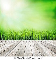 hout, plank, op, groene, natuurlijke , abstract, achtergrond