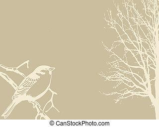hout, silhouette, vogel, achtergrond