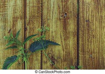 houten, met, groen gras, achtergrond
