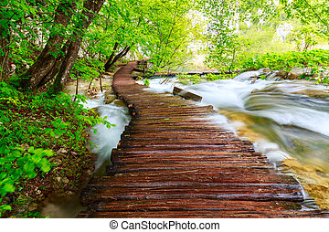 houten pad, in, nationaal park, in, plitvice