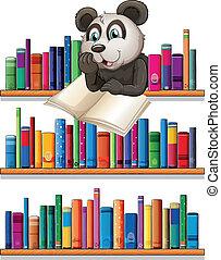houten, plank, boekjes , boven, lezende , panda