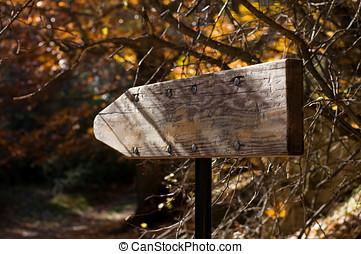 houten, zingen, richtingwijzer, het indiceren, een, straat, in, forest.