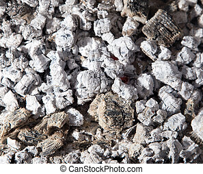 houtskool, achtergrond