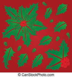 houx, feuilles, baies