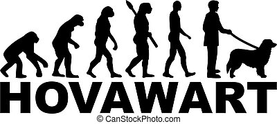 Hovawart Evolution with name
