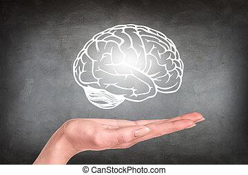 hovered, op, hand, hersenen, menselijk, getrokken