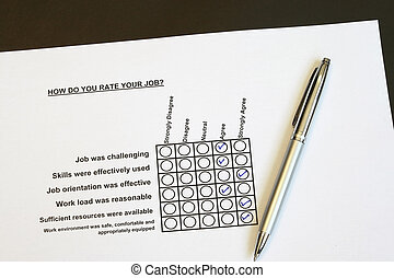 How do you rate your job survey