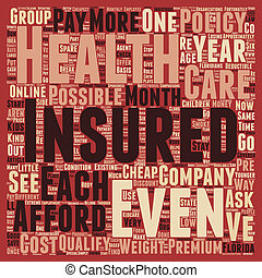 How To Get Cheap Health Insurance Online In Florida text background wordcloud concept