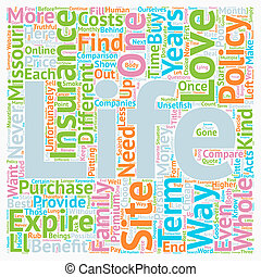 How To Get Cheap Life Insurance Online In Missouri text background wordcloud concept