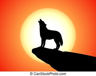 Howling wolf stands on a rock at sunset